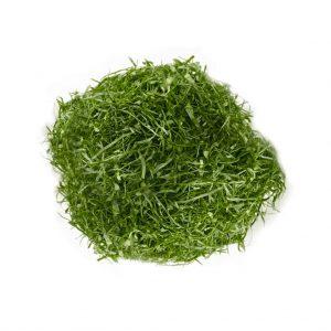 caldo-verde
