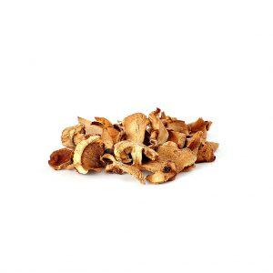 cogumelo-porcini