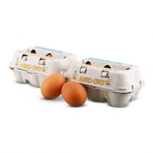 duzia ovos