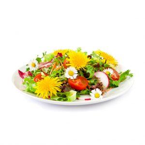 flores-comestiveis-importadas