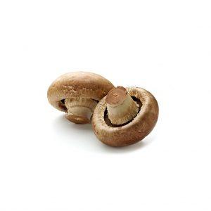 CogumeloMarron