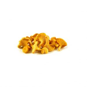 cogumelo-girolles