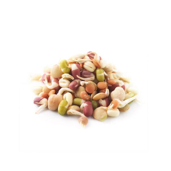 rebento-mix-covete-125gr